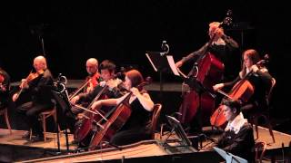Vivaldi La Stravaganza N 2 Dir Mtra Patricia Pouchulu Solista Pablo Saraví