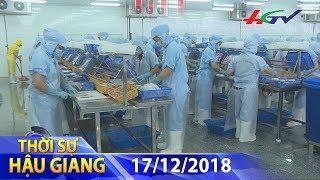 Hậu Giang – kim ngạch xuất nhập khẩu vượt 1 tỷ đô la Mỹ | THỜI SỰ HẬU GIANG – 17/12/2018
