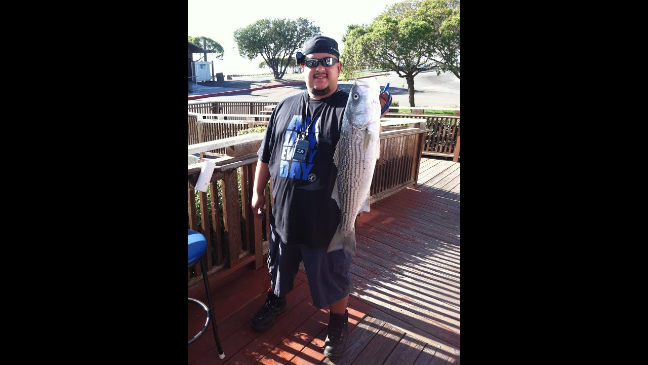 Striped Bass Lure Fishing Oyster Point Youtube