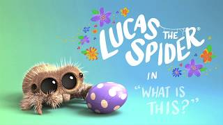 Lucas the Spider – What Is This?