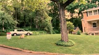 Twelve Thirty - Trailer