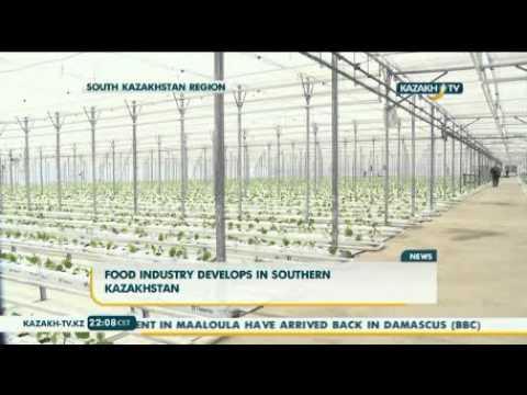 Food industry develops in Southern Kazakhstan