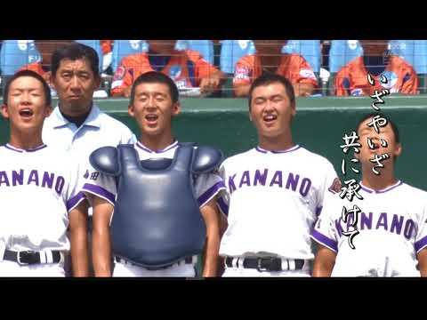 応援したい野球です!