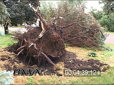 6/24/2005 Severe storm, high winds, hail, lightning and storm damage in Dakota County, MN