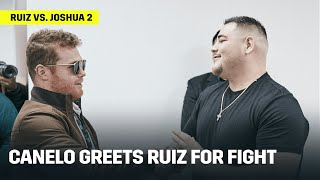 Canelo Alvarez Greets Andy Ruiz Ahead of Ruiz vs. Joshua 2; Picks Him To Win