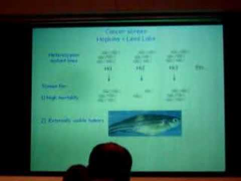 Nancy Hopkins at The University of Texas at Austin Part 4 Video