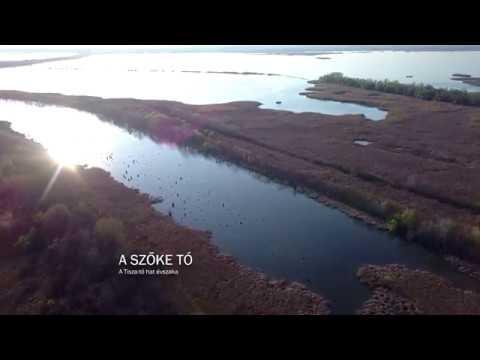A szőke tó - A Tisza-tó hat évszaka (teljes film)
