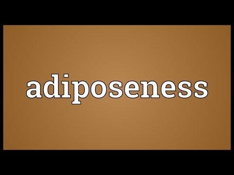 Header of Adiposeness