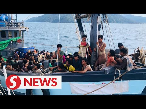 Download  MMEA opens investigation into boat captain for trafficking Rohingya into Malaysia Gratis, download lagu terbaru