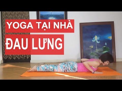 Yoga Trị Liệu | Bài Tập Yoga Chữa Bệnh đau Lưng (Yoga Therapy)