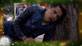 Download La Rosa de Guadalupe: Aurelio es brutalmente golpeado | La última flor de asfalto 3Gp Mp4