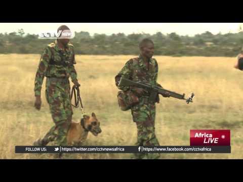Kenya demands total ivory ban to stop elephant slaughter