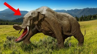 Most MYSTERIOUS Prehistoric Beasts That Ever Lived!