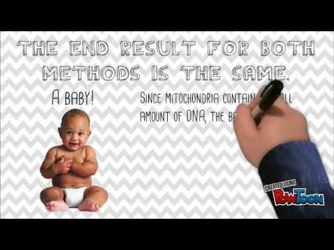 Jack McDonald - Bioethics 2015 - Three Parent IVF