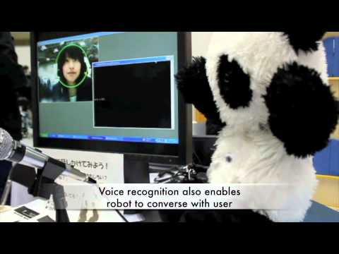 Tocco Chan Communication Robot - ShiftEast.com