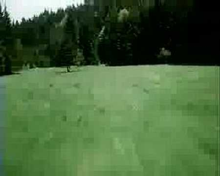 Extremely Low Flying BO-105