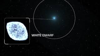 NASA: Black hole shreds white dwarf star