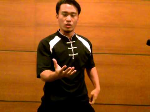What Is Hung Gar Kung Fu & Its Functional Principles 洪拳攻防理论 Image 1