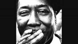 Muddy Waters Mississippi Delta Blues