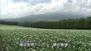 3.嬬恋村を学ぶ~嬬恋村の特徴~