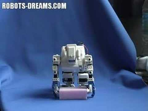 Tomy i-SOBOT Humanoid Robot Evaluation - Part 1