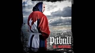 Watch Pitbull Miami Shit video
