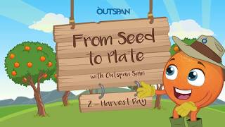 Capespan Animated Explainer - From Seed to Plate 2: Harvest Day