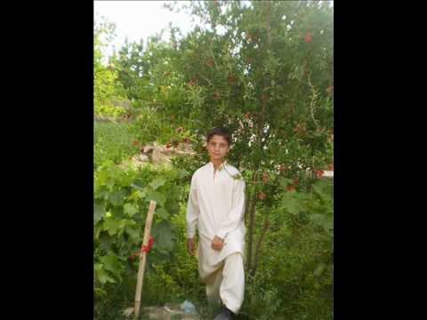 Shakira Pashto  Songs 2010 video