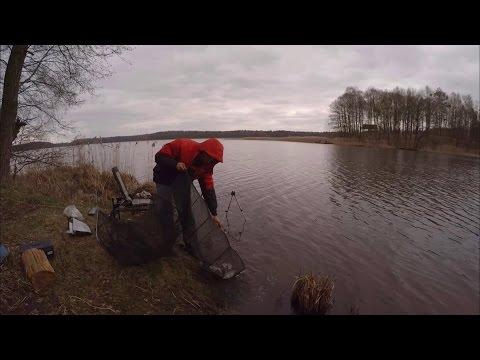 рыбалка на дону весной 2017 года