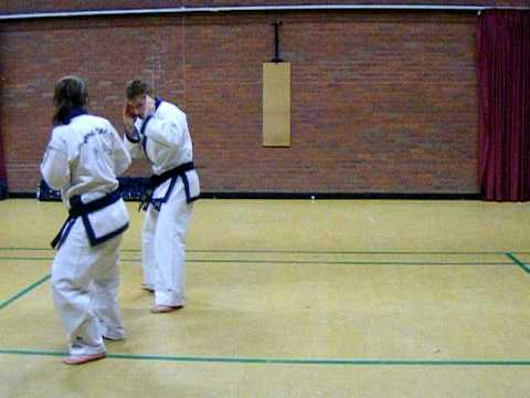Tang Soo Do Ho Sin Sul free basic fighting techniques (A.Warrior) Image 1