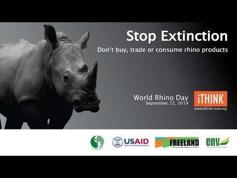 Rhino Day Video