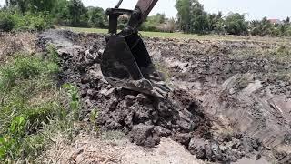 Xe Cần Cẩu,  Xe Cuốc Đất Bánh Xích Đặt Ống Bộng Trên Đất Ruộng Lúa Dẫn Nước Trồng Mít Thái