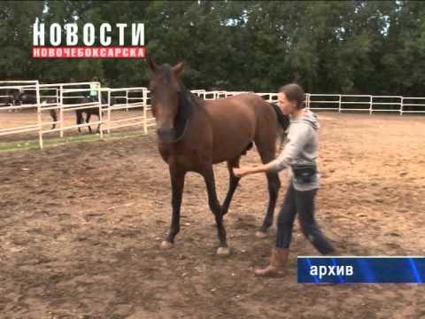 Трагически ушла из жизни спортсменка Анастасия Максимова