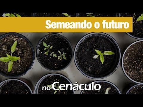 Semeando o futuro | no Cenáculo 05/03/2021