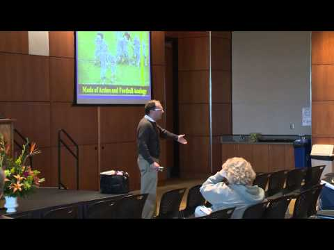Dr. Raymond Cloyd, How Insecticides Work
