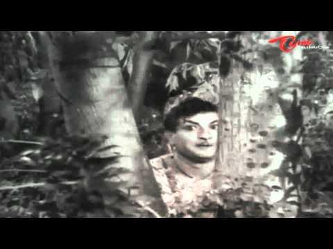 Bandipotu Songs - Vagala Raanivi Neeve - Ntr - Krishna Kumari video