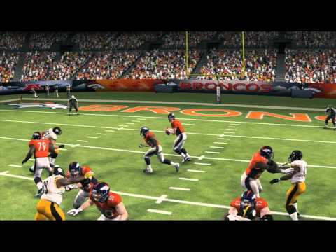 Madden 13 Interception by Troy Polamalu