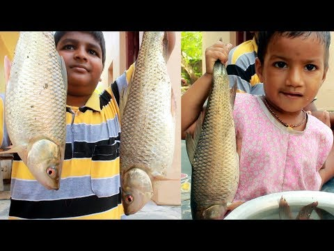 How to Cook Country Fish Curry in village | Delicious Fish Recipe | Traditional Fish Curry Recipe