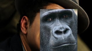 Gorilla by Bruno Mars- A Lyrical Critique