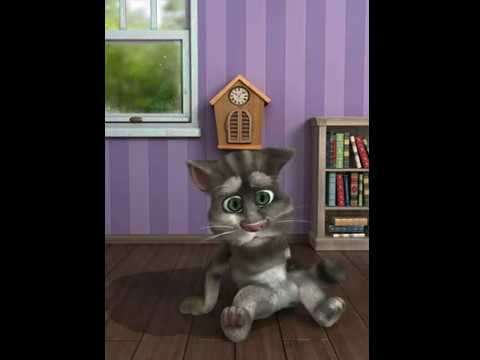 Il Simpatico Gatto Tom