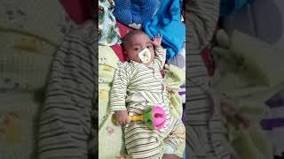 Cutest Chubby Baby - Funny Cute Baby Videos