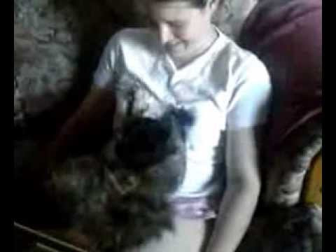 Cat playing with my sisters tits - YouTube