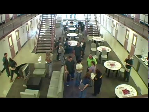 """Jail Dogs In 1C"" Webisode 1  Meet some incredible Dogs!"