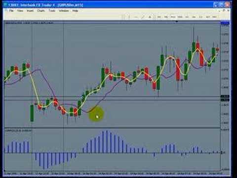 Forex trading seminar melbourne