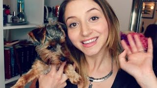 PUPPY HAUL #3 | Nutrition, Treats, Dental Care | PUPPY Says Hello!