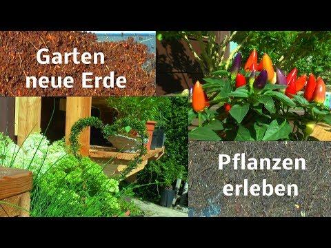 Erlebnis Garten Paradies im Wandel der Zeit entdecken und sich inspirieren lassen 2