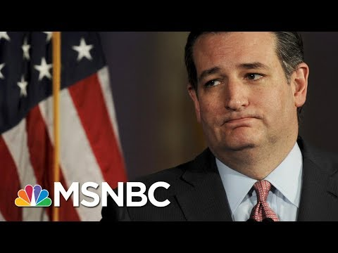 Why Senator Ted Cruz Should Stand Up To President Donald Trump | Morning Joe | MSNBC