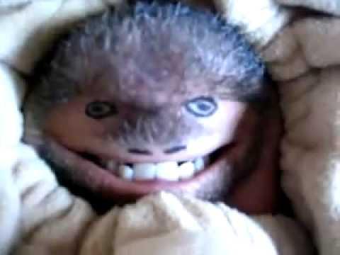 Monkey Making Faces Monkey Face Keeps Kids