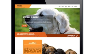 Best Animal Pet Service or Dog Training Free WordPress Theme With Download Link