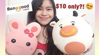CHEAP JUMBO SQUISHIES?! | Banggood #11